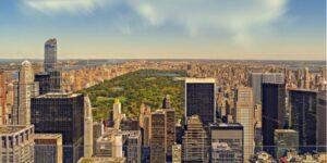 New York (NY)