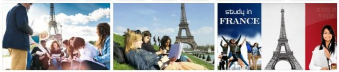 Study System In France